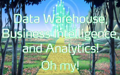 Data warehouse, business intelligence, and analytics, oh my!